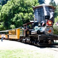 Roaring Camp Railroad