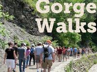 James Potorti Interpretive Gorge Walk - Cayuga Nature Center/Dennison Falls