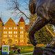 Fall 2019 semester begins (graduate programs)