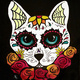 Paint and Sip: 7/11: Sugar Cat Skull ~ Ages 21 and up ~