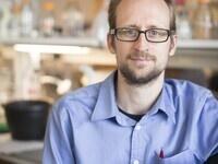 """Regulation of cell wall turnover in gram-negative pathogens""- Tobias Doerr"