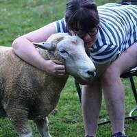 Tour Farm Animal Sanctuary