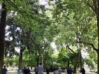 Park Yoga + Beer at Migration Brewing