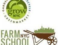 Learn to Grow Mushrooms in NYC!