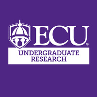 Undergraduate Research Summer Symposium