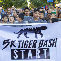 5K Tiger Dash and 1/2-Mile Cub Run