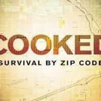 """Cooked: Survival by Zip Code"""