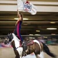 Saddle Up for the 15th Anniversary of the CNE's HorseCapades