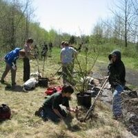 Tree Planting with REI