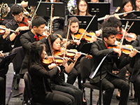 Cornell Symphony Orchestra and Chamber Orchestra: CU Music