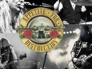 Appetite For Destruction-Guns N Roses Tribute