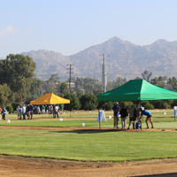2019 Turfgrass and Landscape Research Field Day