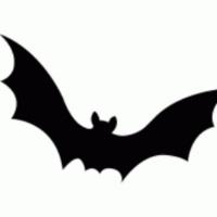 Nature Craft & Story: Bats