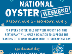 Give Back to the Bay National Oyster Weekend