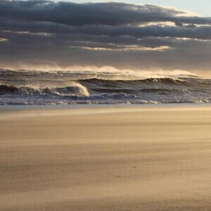 Bay to Beach Boardwalk Tour