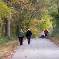 A Walk In Penn's Woods