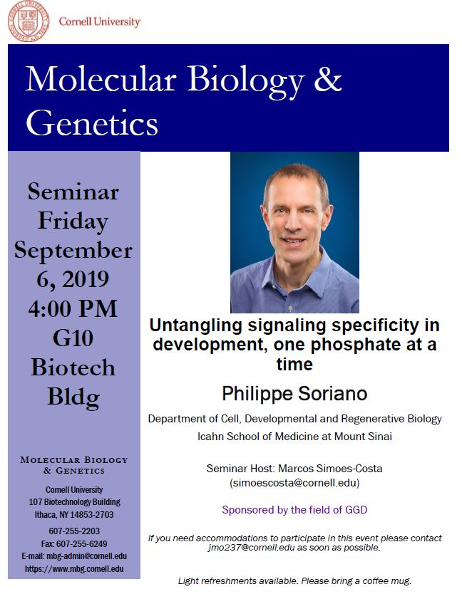 MBG Friday Seminar: Philippe Soriano - Untangling signaling specificity in development, one phosphate at a time