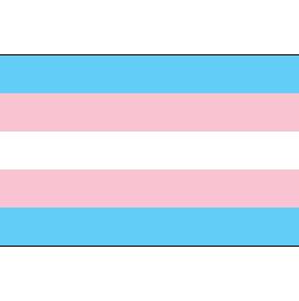 Transgender Focused Safe Zone Workshop