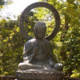 Vipassana Meditation with the Lotus Meditation Center