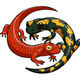 Salamander Room Story Time & Activity