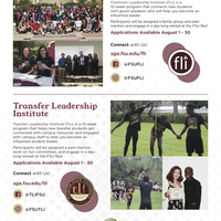 FLI and TLI Fall Applications