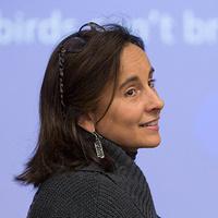 Ecology Seminar: Sonia Hernandez