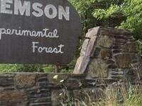 Clemson Experimental Forest Tours: 11/9/19