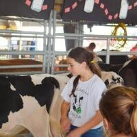 Sussex County 4-H Dairy Club