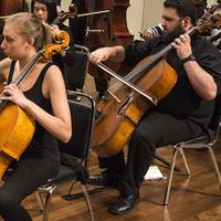 Morpheus Chamber Ensemble