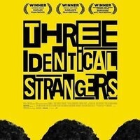 Movies on the Grass: Three Identical Strangers