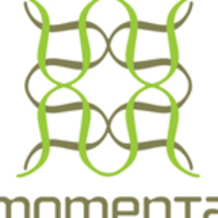 Momenta Workshop: Project Portland 2019