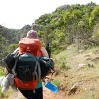 Hiking Bonham State Park Half-Day Trip