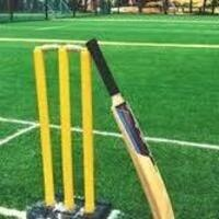 6v6 Box Cricket Tournament