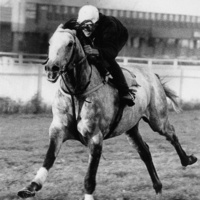 "Howard County Historical Society History Lecture: ""Billy Barton, Race Horse at Belmont"""