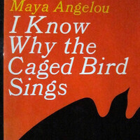 50 Years of Caged Bird: An Exhibit