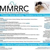 Precision Mouse Modeling: Translation to Human Disease