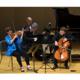Argenta Trio: Vienna in C