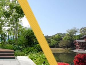 Celebrating the Relationship between Pittsburgh and Japan through Garden Design