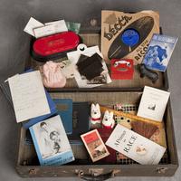 Willard Asylum Suitcase