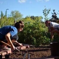 Fall Garden Work Days