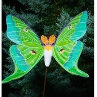 Wings of Wonder: A Butterfly Exhibit Art Auction