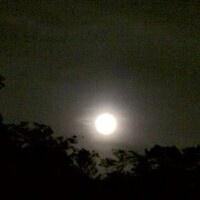 Harvest Moon Hike