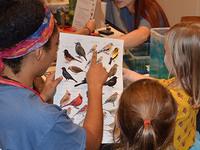 Cornell Lab of Ornithology Volunteer Information Session
