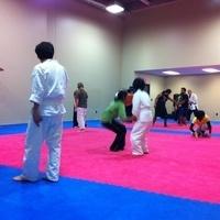Aikido self-defense practice