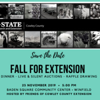 Fall for Extension