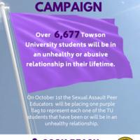 Purple Flag Campaign