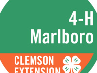 Marlboro County 4-H Horse and Livestock Club