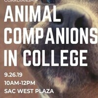 Animal Companions in College