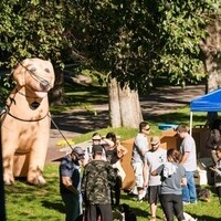 Pack the Park- DogFest