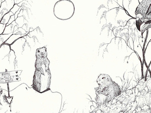 pencil illustration of two prairie dogs  in a field.